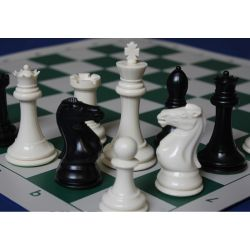 """PLASTIC CHESS PIECE 4\""\"" WITH WEIGHT\"""